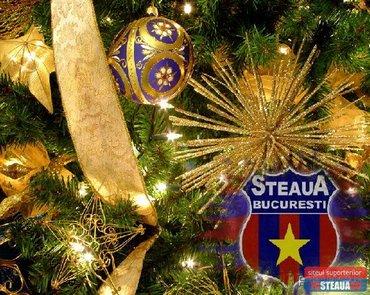 Sarbatori Fericite Steaua