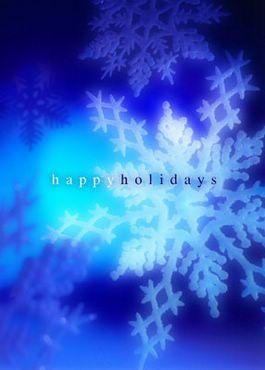 Happy Holidays - Fulgi