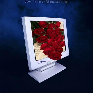 Love - Trandafiri Rosii