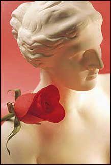 Dagoste - Trandafir Rosu