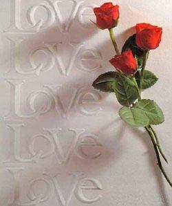 Love&roses