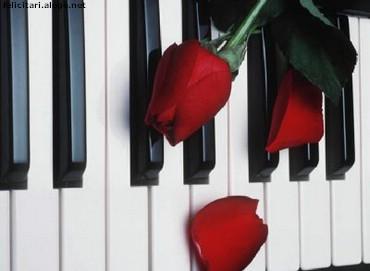 Trandafiri pe pian