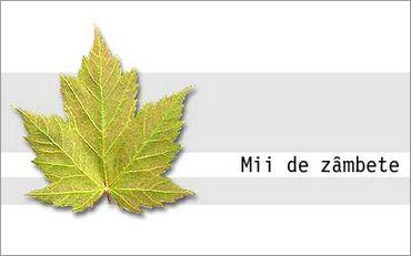 Mii De Zambete