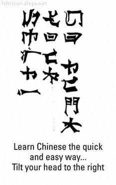 Invata chineza