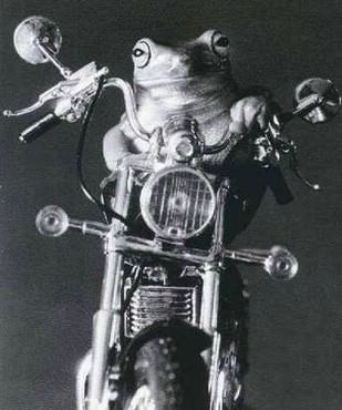 Motocicleta Mea