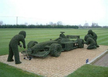 Racing Hedge