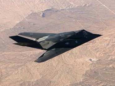 Nighthawk In Desert