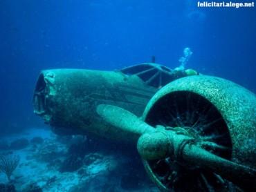 Sunken Plane Aruba