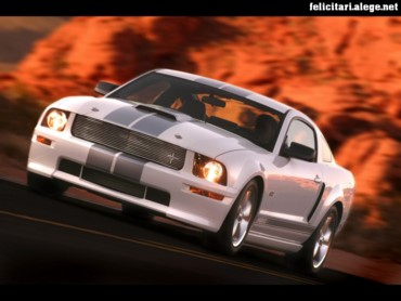 Ford Shelby GT white