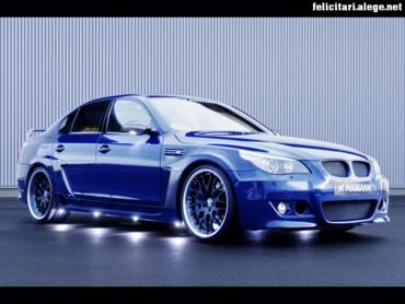 Hamman BMW 2006