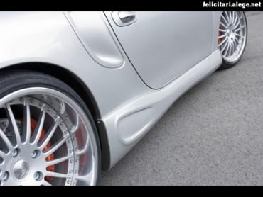 Hamman Porsche 2