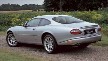 Jaguar Spate