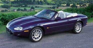 Jaguar Albastru