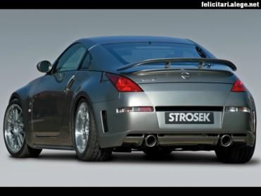 Strosek Nissan rear