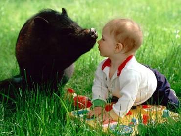 Copii Si Animalele