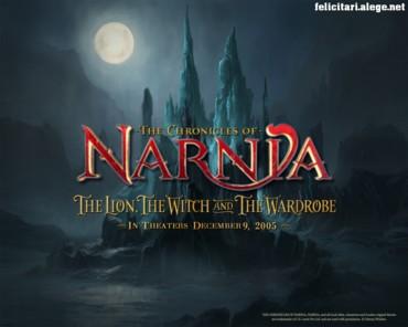 Narnia night