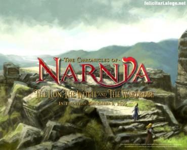 Narnia rocks