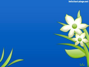 Spring blue green