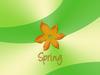Spring orange flower