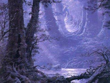 Jungle In Moonlight