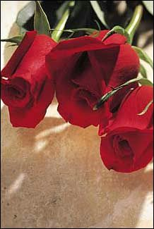 Trei Trandafiri