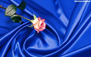 Rose Art Style