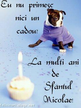 Animalutze Eu_nu_primesc_nici_un_cadou_La_multi_ani_de_sfantul_nicolae