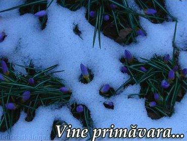 Vine Primavara