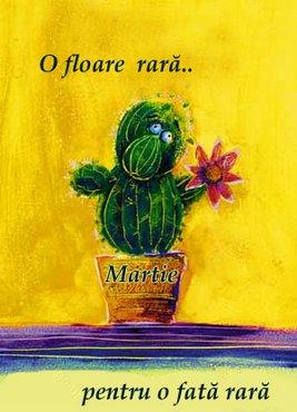 8Martie Floare Rara