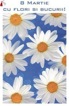8 Martie cu flori si bucurie