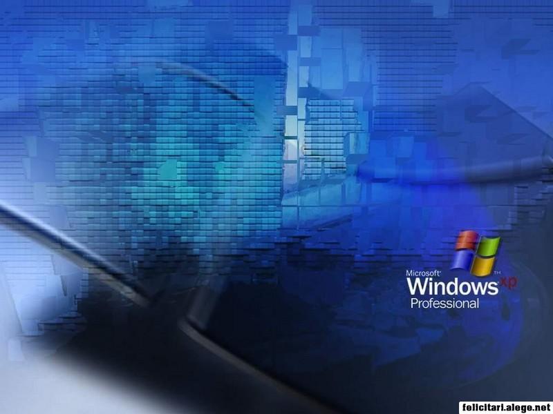 Windows Xp The Wall