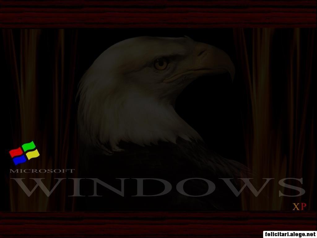 Windows Xp White Eagle