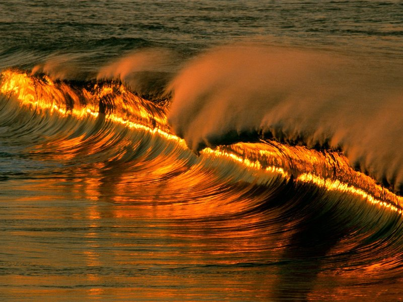 Golden Wave At Sunset Puerto Escondido Mexico