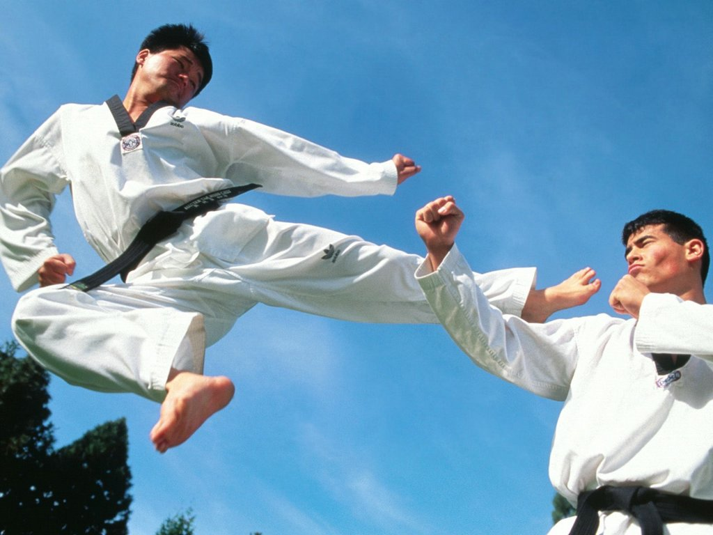 free wallpapers offense defense karate 1024 x 768