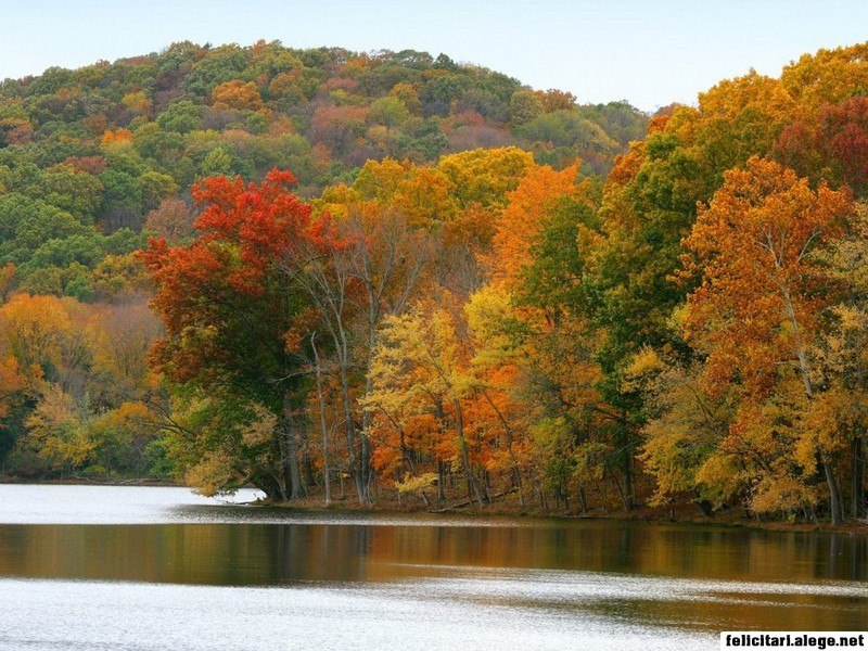 Radnor Lake In Autumn Nashville Tennessee