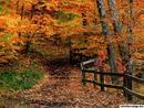 Mccormick Creek State Park Indiana