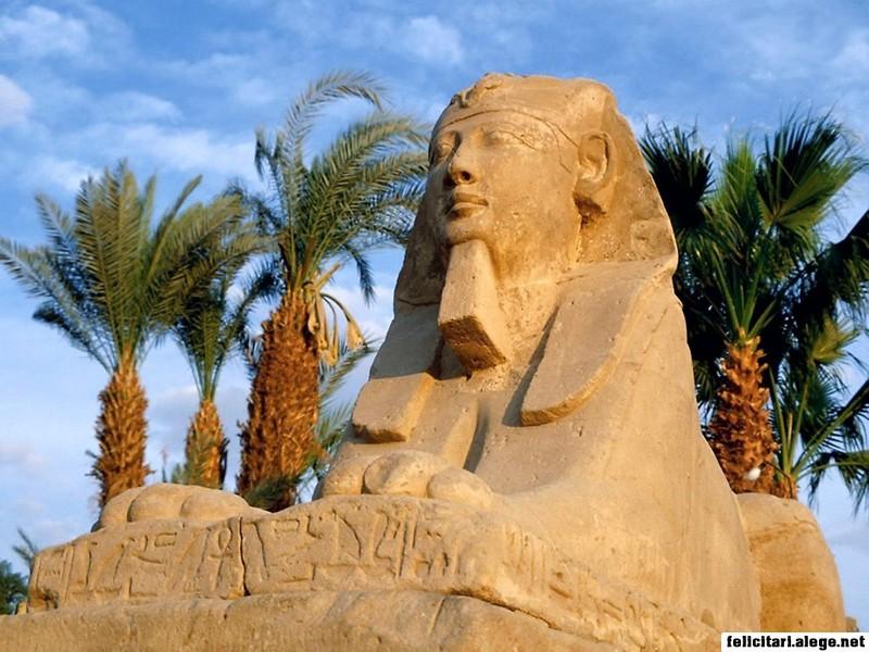 The Sphinx Luxor Egypt